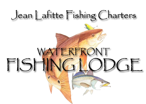 New orleans new orleans fishing charters and fishing for Louisiana non resident fishing license